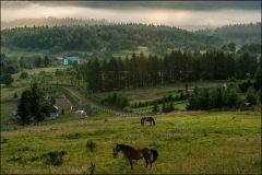 Bieszczady Prawdziwa agroturystyka Stajnia Batiara - fot. Tomasz Koryl / www.relacje-fotograficzne.com